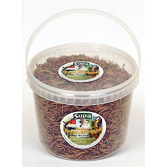 Supa Sušené Mealworms Bucket - 3 litry