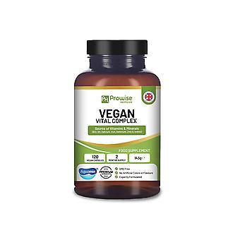 Vegan Vital Complex - test
