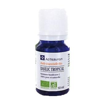 Tropical basil essential oil 10 ml of essential oil