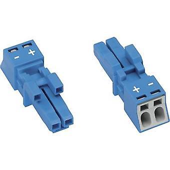 Złącze zasilania sieciowego WINSTA MINI serii (Złącza zasilające) WINSTA MINI gniazda, prosto całkowita ilość pinów: 2 16 A niebieski WAGO 1 szt.