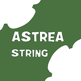 Astrea Violin D String 1/2-1/4