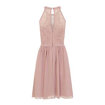 Little Mistress Womens/Ladies Eyelash Lace Midi Prom Dress