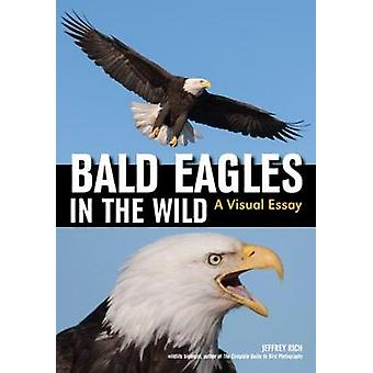 Bald Eagles In The Wild - A Visual Essay of America's National Bird by