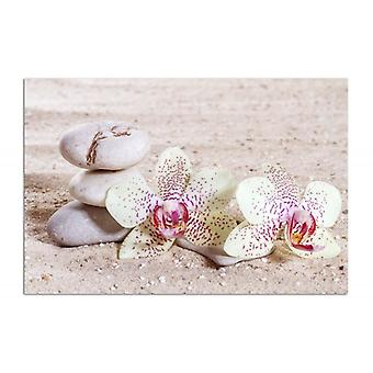 Deco Panel, orchid and stones on the sand 2
