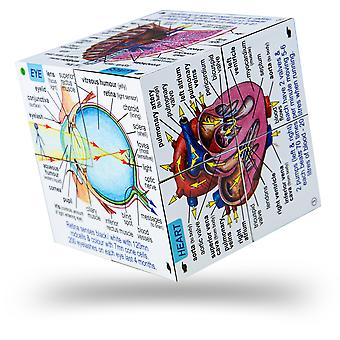 ZooBooKoo Educational Human Body Systems and Statistics Cubebook Science