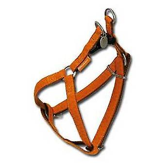 Nayeco MacLeather brown dog harness L (Dogs , Collars, Leads and Harnesses , Harnesses)