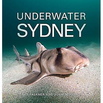 Underwater Sydney by Inke Falkner - 9781486311187 Book