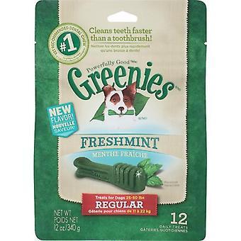 Greenies Regular MINT Treat Pack 340gm
