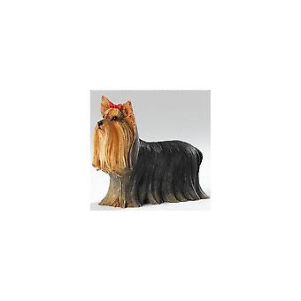 Country Artists Yorkie Standing