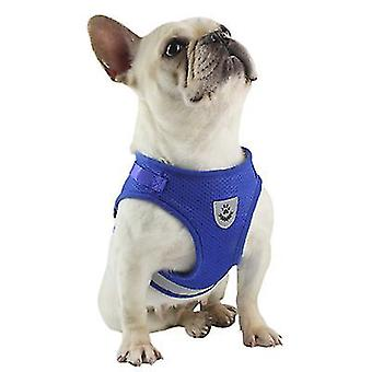 S blue seat belt and leash set for small dogswithout traction type dog seat belt x2195
