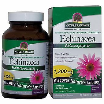 Nature's Antwoord Echinacea, 90 Vegcaps