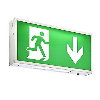 Saxby illuminazione vista casella EM 1, 5W mantenuto uscita di emergenza Signage