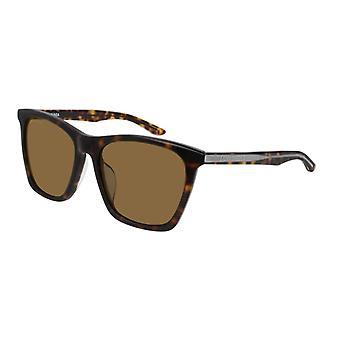Balenciaga BB0017SK 002 Havana/Brown Sunglasses