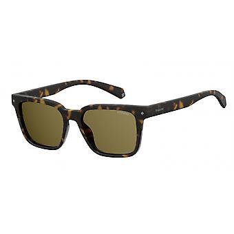 نظارات شمسية للجنسين 6044/S086/SP havanna/أخضر