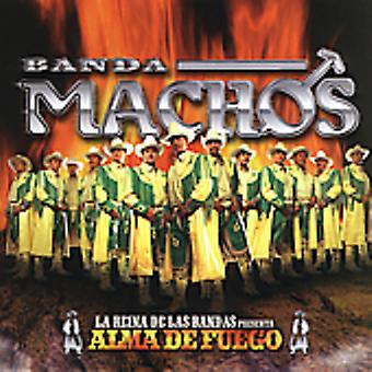 Banda Machos - Alma De Fuego [CD] USA import
