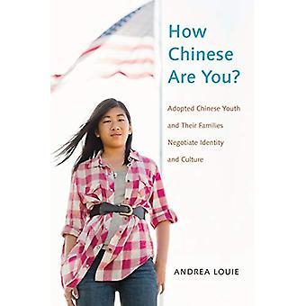 Wie chinesische seid?: chinesische Jugend angenommen und ihre Familien verhandeln, Identität und Kultur