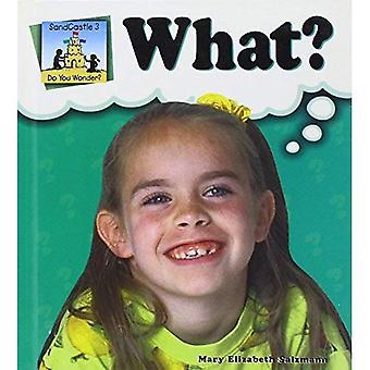 I Wonder What? (SandCastle: Do You Wonder?)