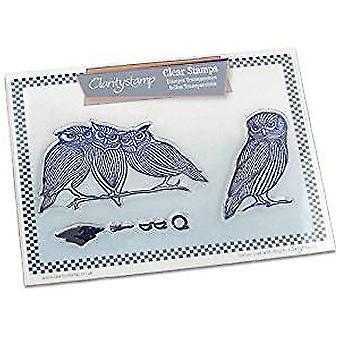 Claritystamp Wise Owls Clear Stamps