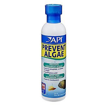 API Prevent Algae 118ml