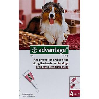 Advantage Red Dogs 22-55lbs (10-25kg) - 4 Pack
