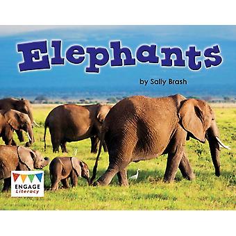 Elephants by Kelly Gaffney