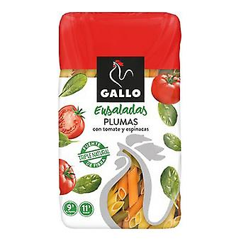 Ensaladas de Macarrones Gallo Penne Tomate Espinacas (500 g)