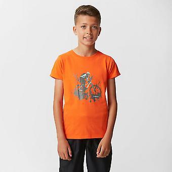 Nieuwe Peter Storm Boy's Downhill reizen casual T-shirt oranje
