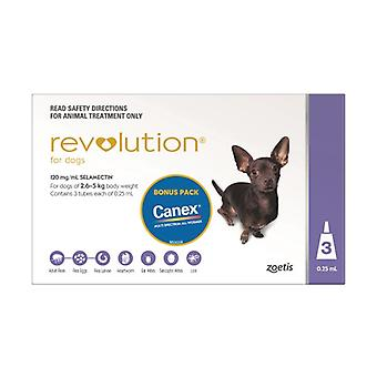 Revolution Purple, 3er-Pack plus Canex