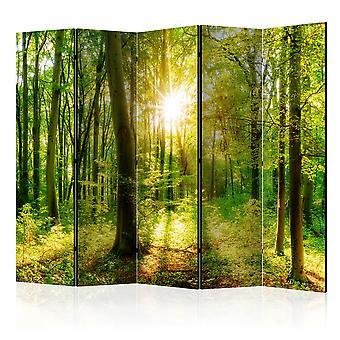 Parawan 5-częściowy - Promienie lasu [Room Dividers]