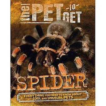 Sällskapsdjur får: Spider (sällskapsdjur får)