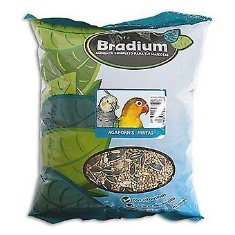 Bradium Lovebird Mixture Bradium And Nymphs 4Kg (Large) (Birds , Bird Food)