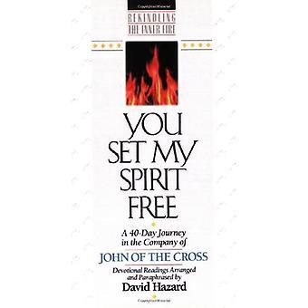 Você definir meu espírito livre: Uma jornada de 40 dias na companhia de João da Cruz: leituras devocionais (reacender o fogo interior)