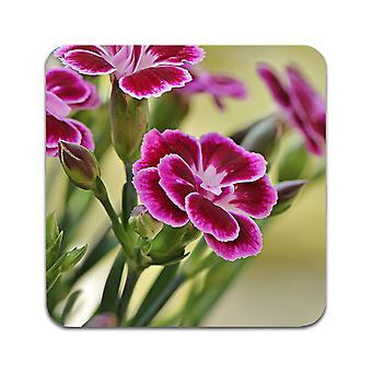 2 ST Blumen Nelken Untersetzer