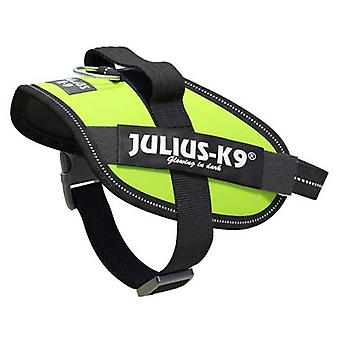 Julius-K9 IDC-Powerharness For Dogs Size: Mini-Mini, Neon Green