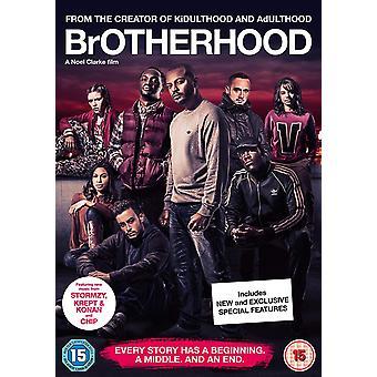 Brödraskap DVD