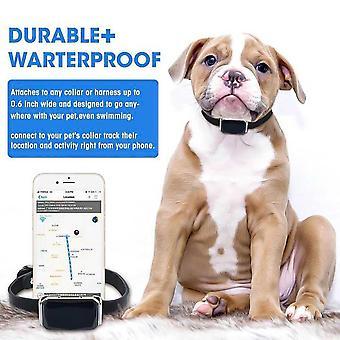 Intelligenter Haustier-Tracker Multifunktionale Hunde-GPS-Halsband-Ortung| GPS-Tracker