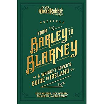 Fra bygg til Blarney: en whisky elskers Guide til Irland