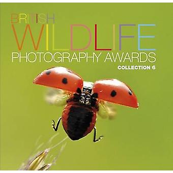 British Wildlife Photography Awards-coleção 6-coleção 6-978