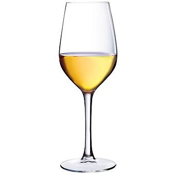 Luminarc Great Wine Cup Sommelier (Kitchen , Household , Cups and glasses)