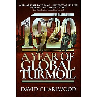 1920 A Year of Global Turmoil by David Charlwood