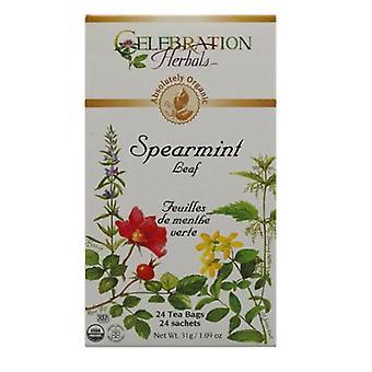 Celebration Herbals Organic Spearmint Leaf Tea, 24 Bags