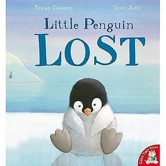 Petit pingouin perdu