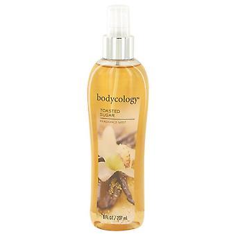 Bodycology Toasted Sugar Fragrance Mist Spray By Bodycology 8 oz Fragrance Mist Spray