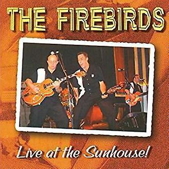 Firebirds - Live at the Sunhouse [CD] USA import