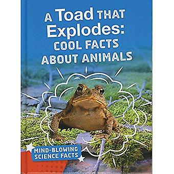 A Toad That Explodes: Cool� Facts About Animals (Bright Idea Books: Mind-Blowing Science Facts)