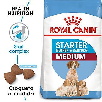 Royal Canin Medium Starter para Cachorros yMadres Lactantes Tamaño Mediano