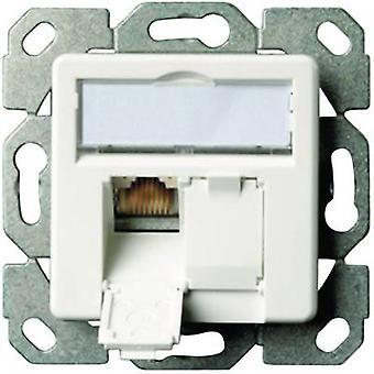 Telegärtner Network Outlet Flush mount Einsatz mit Hauptpanel CAT 6 2 Anschlüsse Oyster weiß