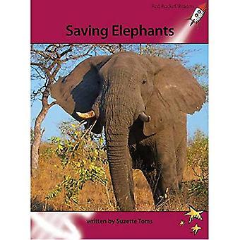 Opslaan van olifanten