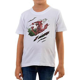 Reality glitch torn wales flag kids t-shirt