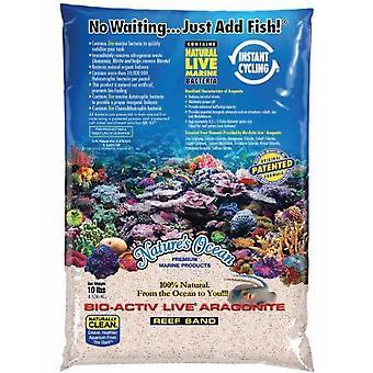 Natures Ocean Activ Live Bio White 0.5-1.7 mm 4.5 Kg